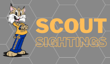 Scout Sightings Image