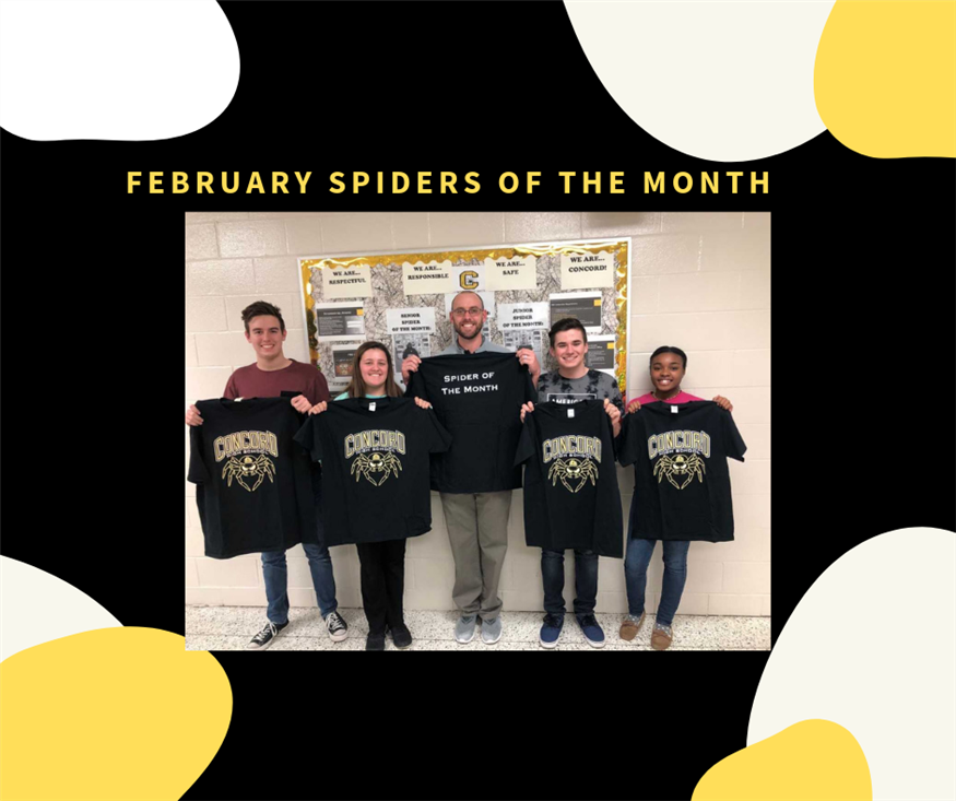 February Spiders of the Month