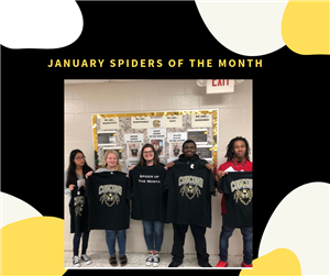 January Spiders of the Month