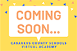 Virtual Academy Set to Open