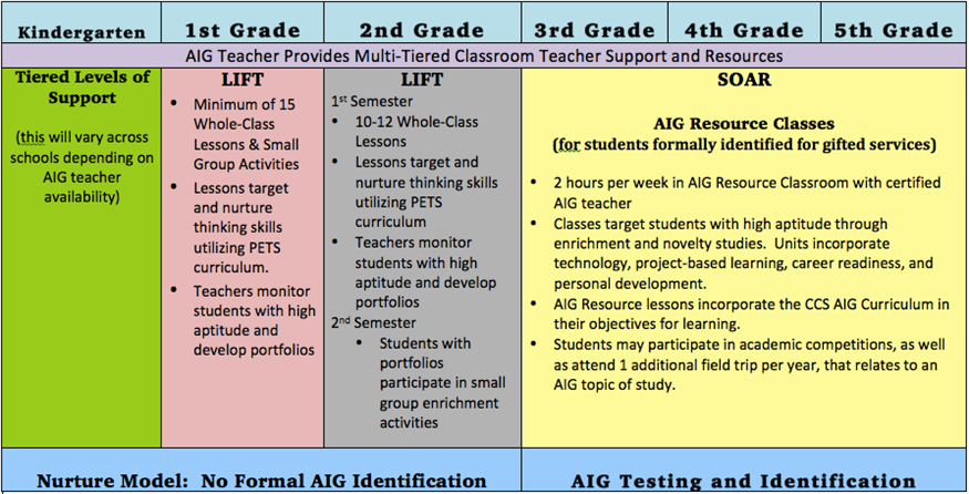 CCS Continuum of Elementary AIG Services