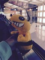 stinger in the Chinese airport